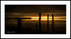 Chasm Too (RonnieLMills) Tags: rough island islandhill sunrise dawn early morning light dark reflections wooden posts jetty remains comber newtownards county down northern ireland calm waters strangford lough chasm ronnielmills greatphotographers