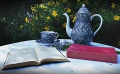 DSC02796-02 (suzyhazelwood) Tags: garden gardens summer sunlight sony a6000 england uk teacup teapot tea cakes cake cupcakes food teaparty books