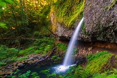 Horsetail falls @ Columbia river gorge