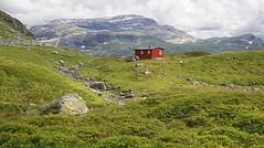 Late mountain summer (Arnt Kvinnesland) Tags: mountains mountainside suldal suldalskaret rogaland norway høyfjell august sommer