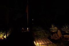 _MG_1708.CR2 (jalexartis) Tags: lighting backyard landscaping nightphotography night nightshots