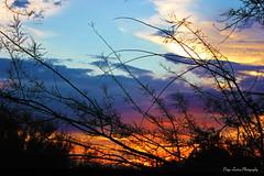 Arizona Sunset (Paige Larissa Photography) Tags: sunset sunsets arizona az nature sky cloud clouds colorful color landscape like comment follow
