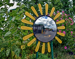 Reflection In A Sunflower-HSS! (✿✿Jo Zimny Photos✿✿) Tags: sliderssunday sunflower mirror reflection petals yellow greenstar naturalfoodsstore healthy bushes green roseofsharon hdr clouds people bicycle sky white blue