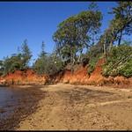 Erosion Red Cliffs of Scarborough 20Aug17-01= thumbnail