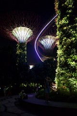 Singapur (Jil Kristin) Tags: singapur asia asien travel canon digital gardens by bay trees park night lights plants nature