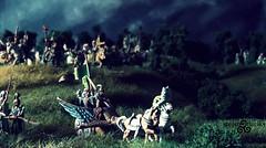 The Elven Host (torq42) Tags: wargame fantasy 15mm 18mm tabletop warhammer tolkien middleearth dragonrampant songofbladesandheroes eurekaminiatures elves cavalry mirkwood woodlandrealm