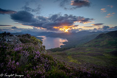 Ben A'an Heather (marklinton94) Tags: nikon d600 scotland britain lake loch water sky sun sunset cloud landscape mountain top heather rock moss