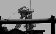 General Blumenthal (hilgers1944) Tags: generalblumenthal zechegeneralblumenthal bergwerkgeneralblumenthal recklinghausen recklinghausenhillen ruhrgebiet ruhrrevier ruhrarea ruhrpott kohlenpott schachtanlage steinkohlenzeche steinkohlenbergwerk steinkohlenbergbau bergwerk bergbau schacht pütt zeche fördergerüst förderturm mine mining coal coalmine coalmining shaft pit pithead headgear headframe mineheads colliery collieries mineshaft mineshaftheadgear shaftmine shaftmining chevalement charbon charbonnage puitsdemines chevalementminedecharbon chevalementpuitsdemine chevalementdemine miningheritage industrialheritage miningengineering industrialhistory old history bw blackwhite industry indutrie minesdecharbon blackandwhite industria fosse kopalnia szyb dul pozo bfv1 endofindustry industrialdecay postindustrial abandoned urbex
