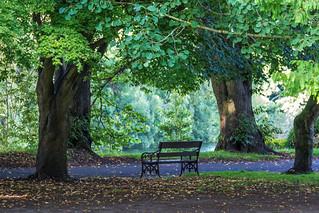 Ireland - Cork - Fitzgerald Park