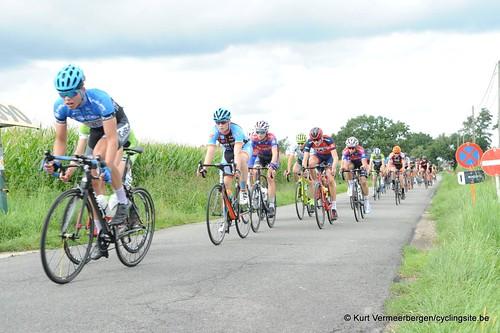 Omloop Vlaamse gewesten (363)