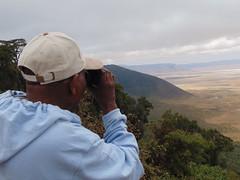 DSC00272 (francy_lioness) Tags: safari jeep animals animali ippopotami leone savana gnu elefante iena pumba tanzaniasafari ngorongorocratere gazzella antilope leonessa lioness facocero