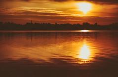 Die Skyline von Radolfzell und andere Einhelligkeit, dass mein baldiger Wohnort zum Glück nicht wirklich als Stadt bezeichnet werden kann. (Manuela Salzinger) Tags: sommer summer abend evening sonnenuntergang sunset bodensee lakeconstance markelfingen see lake