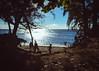 Evening Beach (Garden State Hiker) Tags: kauai beach landscape sunset pacificocean keebeach sky goldenhour hawaii haenastatepark clouds