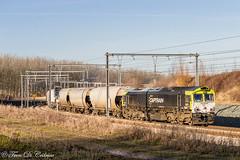 CAPTRAIN 6601  Waaslandhaven (Tren di Cédrico) Tags: captrain antwerpen beveren belgium belgië cargo class66 diesel gm l10 graan waasland haven 6601