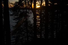 Lake Kukkia Sunset (talaakso) Tags: attributioncreativecommons auringonlasku creativecommons d610 heijastus järvi kukkia nikkor28300 nikond610 solnedgång sunset terolaakso järvimaisema lake lakekukkia lakelandscape luopioinen pälkäne reflection sjö talaakso