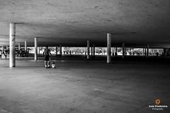 Father and son - São Paulo - Brazil (Luiz Contreira) Tags: sãopaulo ibirapuera brasil brazil blackwhite bw brazilianphotographer street streetphotography southamerica américadosul fotografiaderua pretoebranco pb people pessoas arquitetura architecture
