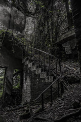 Carclew House (Kristine McCormick Photography) Tags: carclew house ruins abandoned pool goggles photoshop south england derelict manor vegetation ivy plants nature overgrown secret garden scary creepy eery disused fairy tale back water marble pillars urbexplore private land horses green nikon d5100