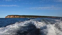 DSC_1238_edit (Hanzy2012) Tags: quebec vacation gaspe peninsula august bonaventure island parcnationaldelîlebonaventureetdurocherpercé canada