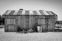 Corrugated Iron and Timber Shacks - Event Area. (Merrillie) Tags: tin corrugated iron building historic old australia vintage rural orange nsw historical monochrome winebarrel orangensw timber country blackandwhite rustic newsouthwales