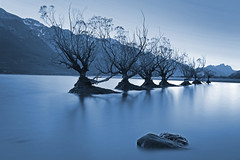 The Seven Sisters at Glenorchy II (lfeng1014) Tags: thesevensistersatglenorchy sevensisters willowsisters glenorchy lakewakatipu southisland otago newzealand nz landscape longexposure 2minutes calm water serenity travel canon5dmarkiii ef1635mmf28liiusm lifeng
