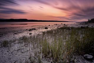 Marée basse sur le Saguenay en Septembre