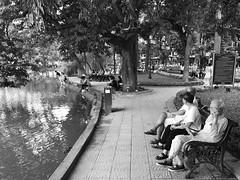 The lake of memories_IMG_2177c (AchillWandering) Tags: old man lake hanoi vietnam water downtown