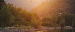 Rijeka Crnojevića (stephaneberla) Tags: birds coucherdesoleil effects effets flare fx lensflare leverdesoleil montenegro oiseaux paysage photography river rivière sunrise sunset