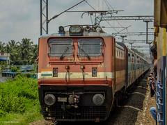 ED WAP-4 #22713 with ERS SBC Intercity ! (Vijesh Kannan) Tags: 22713 ernakulam bengaluru erode palakkad intercity memu palakkadtown indianrailways wap4
