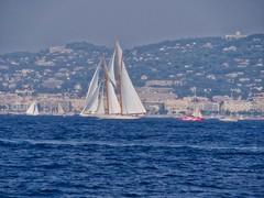 Elena of London (plb06) Tags: france cannes regatesroyales sailboats