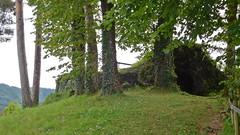DSCN6395 Vic-sur-Cère (Cantal) (Thomas The Baguette) Tags: cantal auvergne france basilique mauriac notredamedesmiracles puysaintmary puy leclou vicsurcere toursdemerle soult argentat correze chastaigne barrage aigle thiezac
