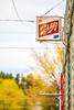 Sultana Bar (Thomas Hawk) Tags: america arizona route66 schlitz usa unitedstates unitedstatesofamerica williams beer fav10