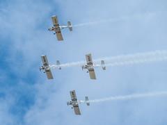 Birds in flight? (Maria-H) Tags: formby england unitedkingdom gb airshow southport planes merseyside uk olympus omdem1markii panasonic 100400