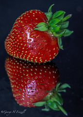 """""""staying healthy"""" (toonarmy59) Tags: stayinghealthy fruit strawberry reflection colourful handpickedstrawberries lucious red green britishstrawberry macromondays"""