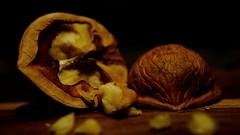 Staying Healthy (idineshsoni) Tags: macromonday walnut seed monday macrophotography photography sony healthy protein power