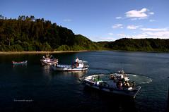 Canal e Isla de Tenglo. (luisarmandooyarzun) Tags: isladetenglo paisaje landscapephotography landscape photography agua angelmo turismo barcos naves mar acéanopacífico chile puertomontt