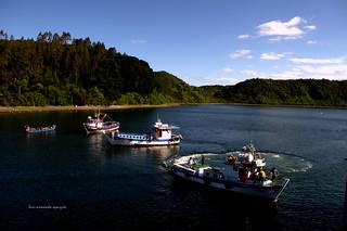 Canal e Isla de Tenglo.