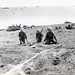 Marines Scouting Minefield on Beach, Iwo Jima, February 1945