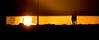 Yellow friends!* (o0o*') Tags: o0o simonpuntocom foto0o foto0ografia fotododia flickr fotopremios viaxando bestoftheday picoftheday photooftheday fotodeldia photography photographer art realism worldofartists lovephotography picture imagen handmade artist nature nofilter realistic artempire dailyarts fotografiasocial artistico foto sorriso fotografia fotografo