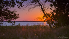 Wetlands Sunset (Dan at ProPeak - Thanks for over 1.1M views!) Tags: america blue colors grass green lakealice nationalwildliferefuge northamerica northdakota orange places red sky summer sun sunset touristattraction traveldestination travelandtourism trees usa unitedstates water