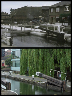 The Day of the Triffids - City Road Lock, Regent's Canal