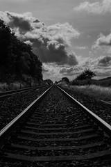 Train Track (poison ghoul) Tags: traintrack train trainline rail blackandwhite