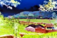 India - Kerala - Munnar - Tea Factory - 1bb (asienman) Tags: india kerala munnar teafactory asienmanphotography asienmanphotoart