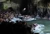 Sea Lion Caves (russ david) Tags: sea lion caves florence or oregon april 2017 pacific ocean