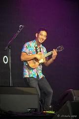 Jake Shimabukuro 7523 (Ursula in Aus) Tags: bluesfest2017 byronbay day4 jakeshimabukuru iphone iphone6 music tyagarah newsouthwales australia ukulele musician performer stagelights