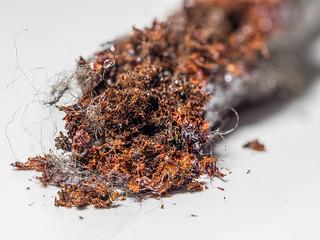 Macro Mondays: Rust