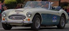 Austin Healey (swong95765) Tags: car sportscar vehicle automobile antique rare refurbished beautiful pristine convertible