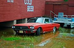 1966 Ford Thunderbird (Cragin Spring) Tags: rural unitedstates usa unitedstatesofamerica illinois il midwest flood water car vehicle ford thunderbird fordthunderbird 1966 winslow winslowil winslowillinois
