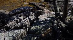Maine coast fractal (Jeff Goddard 32) Tags: maine mainecoast