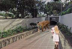 Ultimate tension (ragnarfredrik) Tags: photoshop ps art artwork tension tiger girl