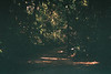 F1010034_lr (chi.ilpleut) Tags: singapore outing dailylife 2017 jubilee film ilovefilms kodakelitechrome100 kodakfilm expiredfilm grain analogue memory 漫步 過期底片 柯達 藍 蒐集記憶 照片使記憶復甦 銀鹽記憶 敘述 新加坡 ubin island green nature ilovegreen beachwalk cycling breathe takeabreak 烏敏島